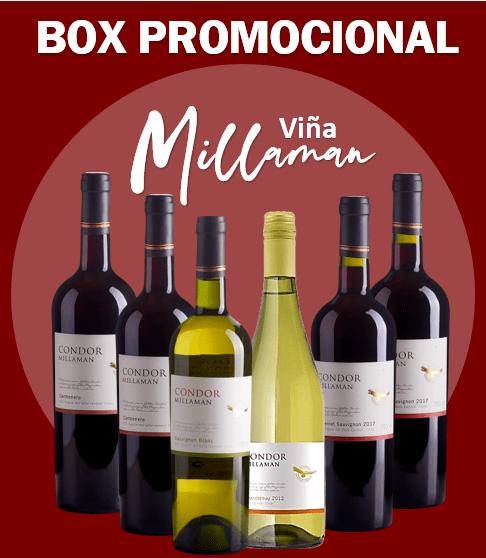 BOX CHILE VIÑA MILLAMAN