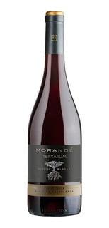 Morandé Select Blocks Pinot Noir