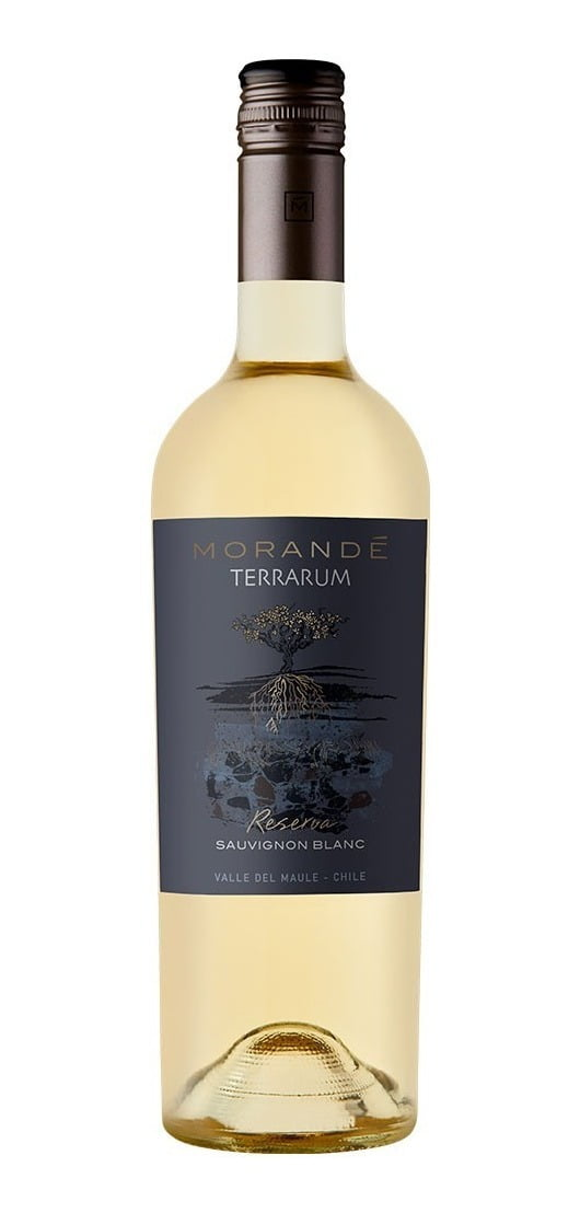 Morandé Terrarum Reserva Sauvignon Blanc