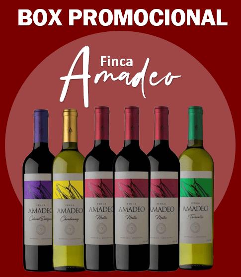 BOX ARGENTINA FINCA AMADEO