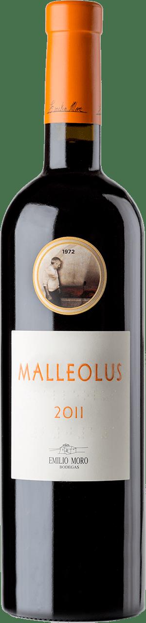 Malleolus Sanchomartin 2011